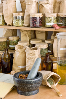 Making Herbal Medicine - Herbs for Wellness